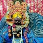 Nitya Thakur Profile Picture