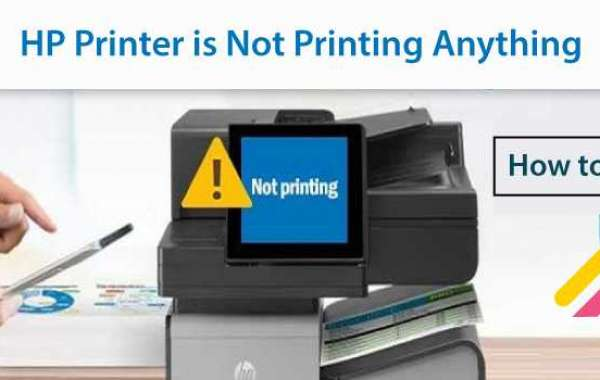 What To Do If HP Printer is Not Printing Anything?