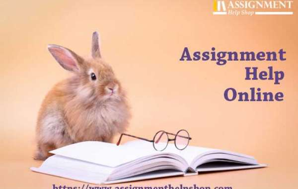 Contribution of assignment help online writer to add high readership