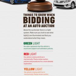 Auto Auction | Visual.ly