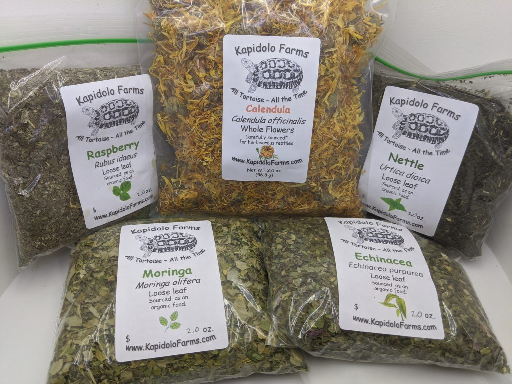 Best Natural Grassland Tortoise Food Bulk | Kapidolo Farms