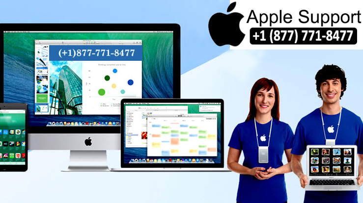 Apple Customer Support Phone Number USA User