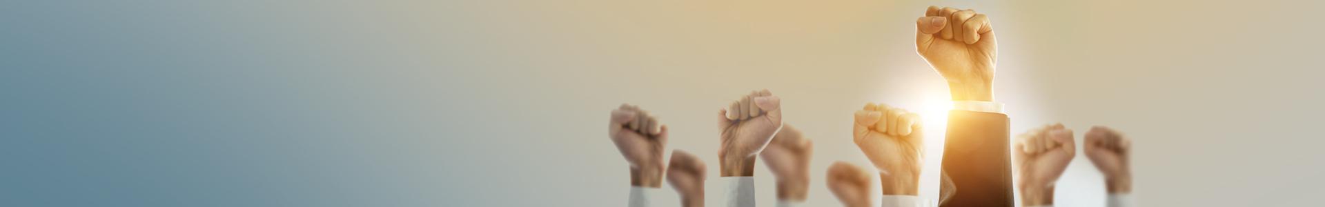 Hire The Most Efficient Management Consultancy in Brisbane